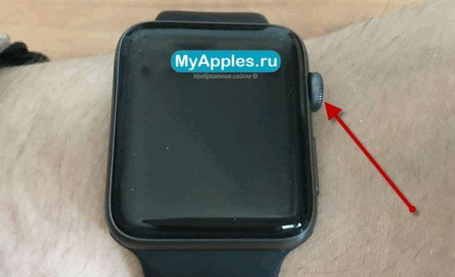 Что предпринять первым делом если ваши Apple Watch не включаются и не реагируют на нажатия