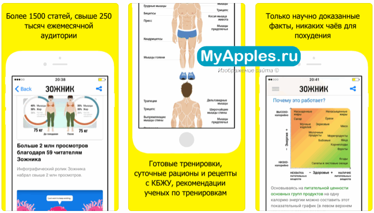 ТОП-5 приложений на Айфон, которые помогут вам похудеть
